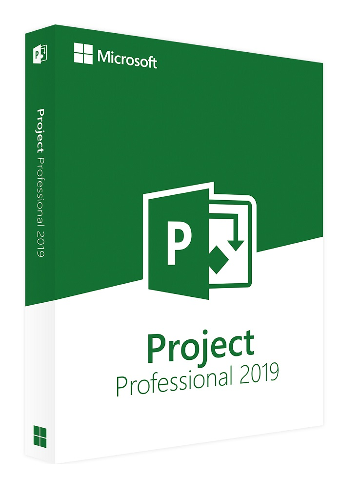 project-professional-2019F